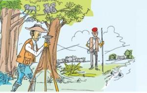 Life and times of a Surveyor