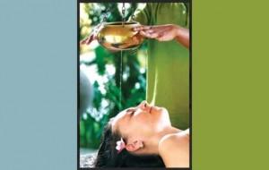 'Wellness' Tourism, a niche market for Sri Lanka